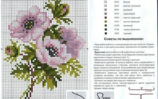 Вышивка крестом цветы картинки со схемами