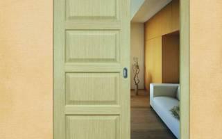 Раздвижная дверь межкомнатная одностворчатая фото