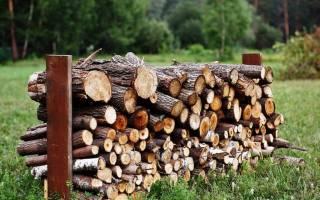 Какими дровами топить баню?